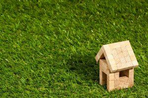 בית בדשא